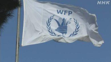 Photo of ノーベル平和賞にWFP=世界食糧計画 | ノーベル賞 | NHKニュース