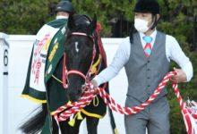 Photo of 【菊花賞レース後コメント】コントレイル福永祐一騎手ら | 競馬ニュース – netkeiba.com