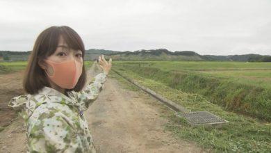 Photo of 山の斜面が崩れた被災地は今…高橋春花アナウンサーが胆振東部地震から2年の現場を歩く