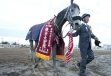 Photo of 【東京大賞典予想】大井が舞台ならオメガパフューム | 競馬ニュース – netkeiba.com