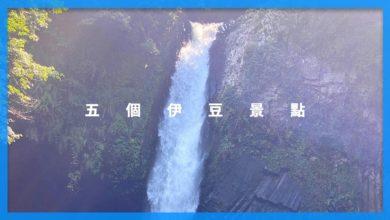 Photo of 好山好水的伊豆五個推薦景點|東京自由行