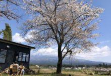 Photo of 「MT. FUJI SATOYAMA VACATION」この春、富士山と桜に囲まれたプライベートグランピングいかがですか?:時事ドットコム