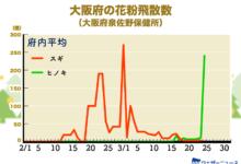 Photo of 大阪府内でヒノキ花粉が急増 東京や名古屋も飛散増加に注意 – ウェザーニュース