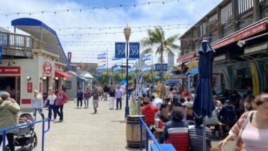 Photo of 【2021年7月 サンフランシスコ 旅の最新事情】観光客が戻りつつある「フィッシャーマンズ・ワーフ」を在住者がレポート | 地球の歩き方 ニュース&レポート