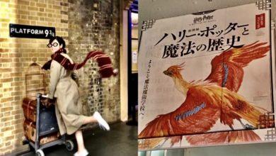 Photo of 東京は12月から!神戸で先行開催中の「ハリー・ポッターと魔法の歴史展」に行ってきました! | MOREインフルエンサーズブログ | DAILY MORE